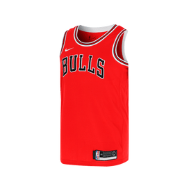 Jersey-Nike-NBA-Chicago-Bulls-Icon-Edition-Swingman