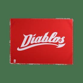 Bandera-LMB-Diablos-Rojos-del-Mexico